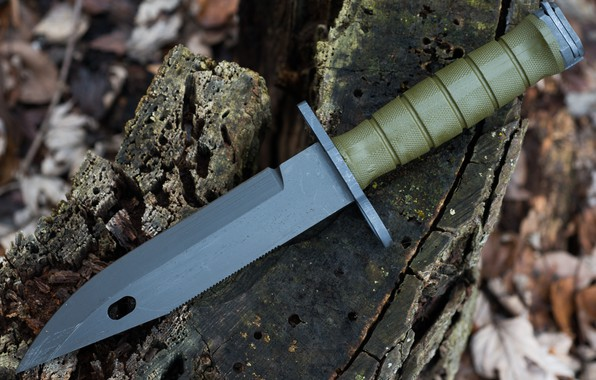 Picture weapons, bayonet knife, M9 Bayonet