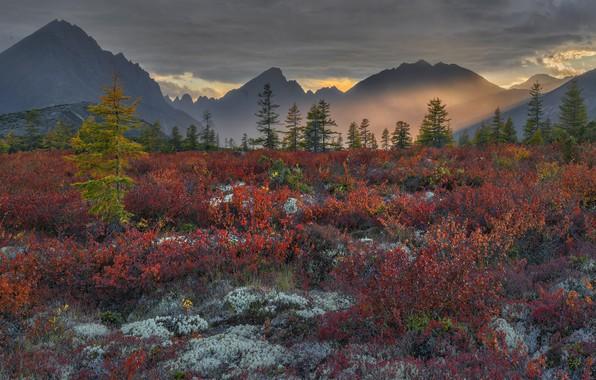 Picture clouds, light, landscape, sunset, mountains, nature, vegetation, the evening, Vladimir Ryabkov, Kolyma, the lake of …