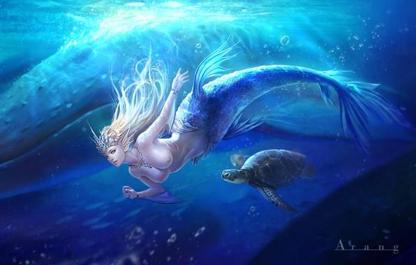 Picture the ocean, mermaid, fantasy, art, bug, Mermaid, TaeKwon Kim(A-rang)
