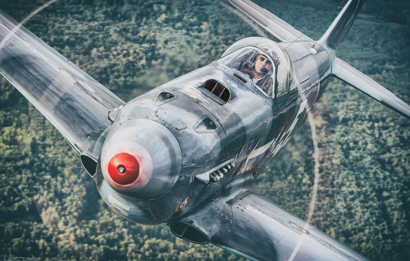 Picture Screw, Forest, The Second World War, The Yak-3, As-3M, THE RED ARMY AIR FORCE, HESJA …