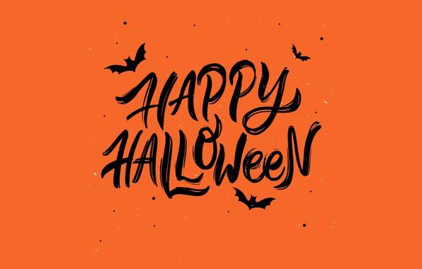 Picture autumn, Halloween, Halloween
