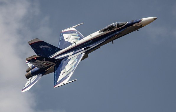 Picture CF-18 Hornet, McDonnell Douglas, Canadian air force