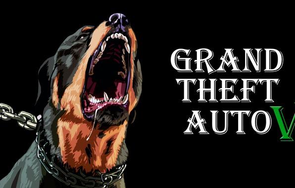 Picture the game, gta5, gta 5, gtav, gta v, Gta, chop, Grand theft auto, gta online, …