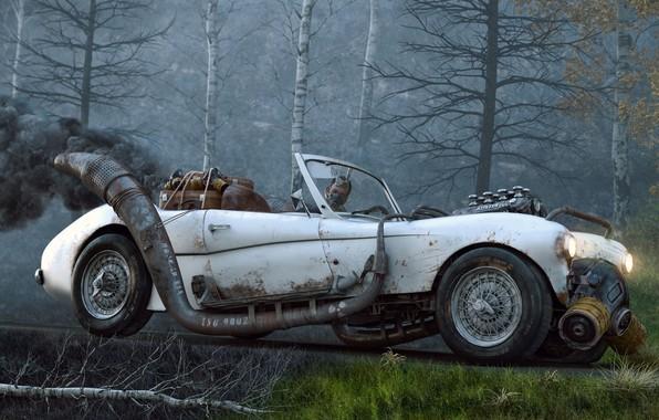 Picture forest, pollution, car, Farid Ghanbari, Car Tragedy