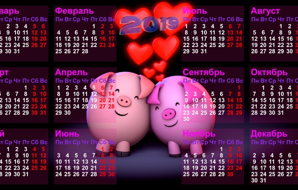 Picture black background, calendar, number, days, months, weeks, pigs, Two thousand nineteen, glowing hearts, The Year …