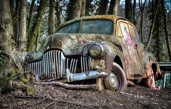 Picture machine, nature, scrap