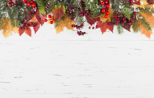 Picture winter, leaves, snow, berries, background, colorful, maple, wood, winter, autumn, snow, leaves, autumn, berries, maple, …