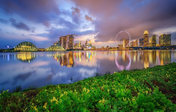 Picture the sky, clouds, lights, Park, building, home, the evening, Bay, Singapore, promenade, skyscrapers