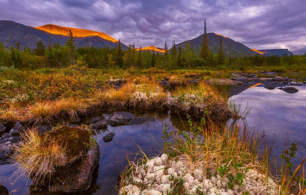 Picture water, mountains, clouds, dry grass