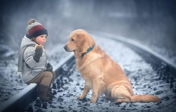 Picture winter, snow, animal, rails, dog, child, dog, bagel, Marianne Smolin