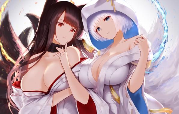 Picture ships, girls, breast, tail, kaga, anime girl, akagi, Ships, Azur Lane