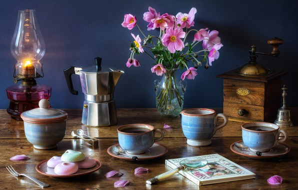 Picture flowers, style, lamp, bouquet, Cup, book, mugs, still life, magnifier, anemones, coffee maker, coffee grinder, …