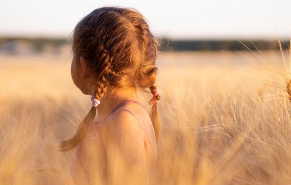 Picture field, Girl, braids