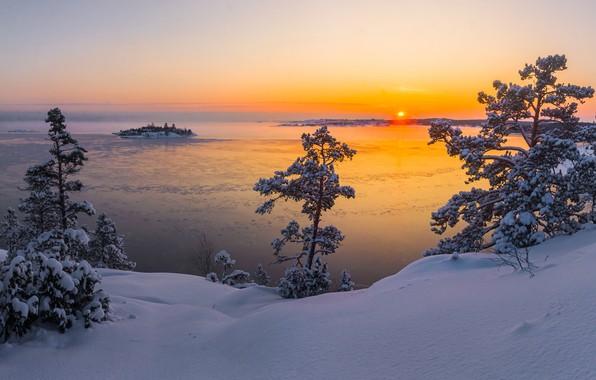 Picture winter, the sun, snow, trees, landscape, nature, lake, dawn, morning, Lake Ladoga, Karelia, Ladoga, Vaschenkov …