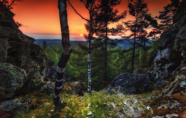 Picture the sun, trees, sunset, nature, Paul Sahaidak, Blue rocks, Ural-Tau