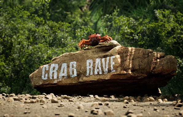 Picture Music, Cover, Monstercat, Noisestorm, Crab Rave