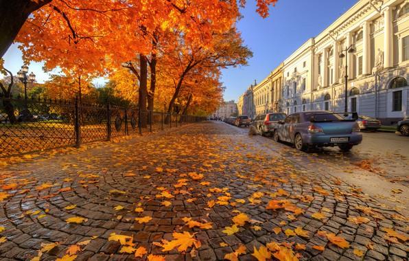 Picture auto, autumn, street, Saint Petersburg, Ed Gordeev, Gordeev Edward