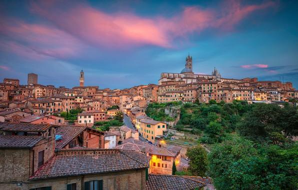 Picture the sky, trees, building, home, Italy, Italy, Tuscany, Tuscany, Siena, Siena