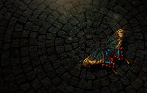 Picture butterfly, light, digital, texture, art, butterfly