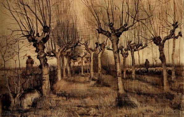 Picture trees, shepherd, goats, Vincent van Gogh, Pollard Birches
