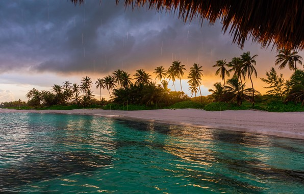 Picture landscape, clouds, nature, tropics, palm trees, rain, the ocean, coast, Valentin Valkov