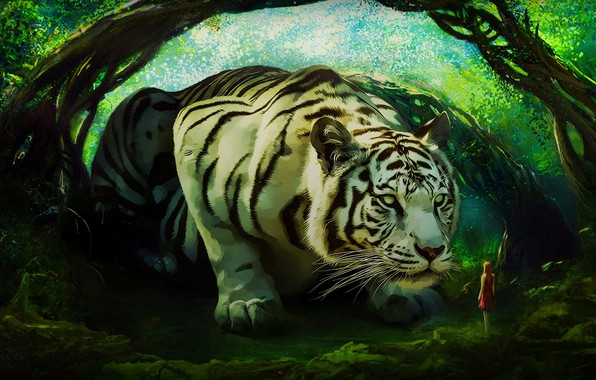 Picture girl, tiger, white tiger