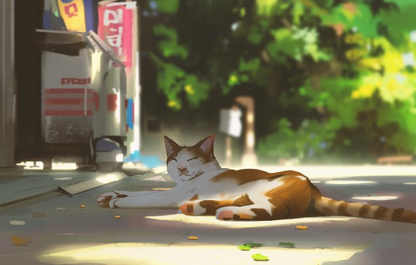 Picture stay, sleep, spotted cat, on the road, in the shadows, summer day, by Snatti