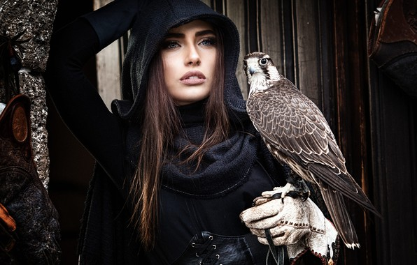Picture look, girl, face, pose, the dark background, each, bird, Board, hand, portrait, hood, brown hair, …