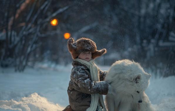 Picture winter, snow, hat, dog, boy, scarf, friends, Samoyed