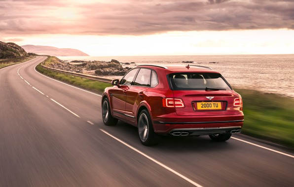 Picture road, coast, speed, Bentley, rear view, 2018, Bentayga