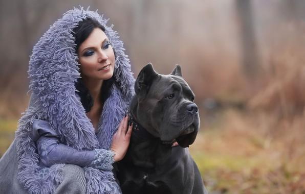 Picture girl, dog, bokeh, cane Corso, Oksana Syrostan