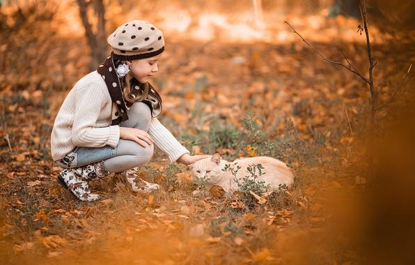 Picture autumn, cat, nature, animal, girl, Vladimir Vasiliev