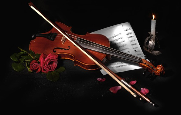 Wallpaper Flowers Style Notes Music Violin Roses Black Background Still Life Items Bow Musical Instrument Composition Images For Desktop Section Muzyka Download