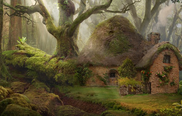 Picture summer, nature, moss, beauty, summer, rays of light, nature, beauty, moss, house in the woods, …