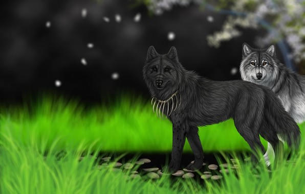Picture grass, background, art, wolves