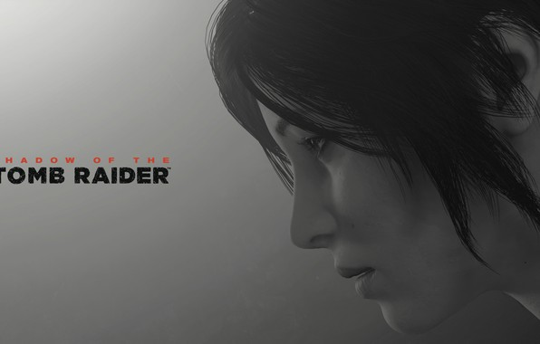 Picture lara croft, long hair, grey background, shadow of the tomb raider