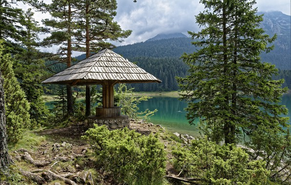 Picture forest, landscape, nature, beauty, gazebo