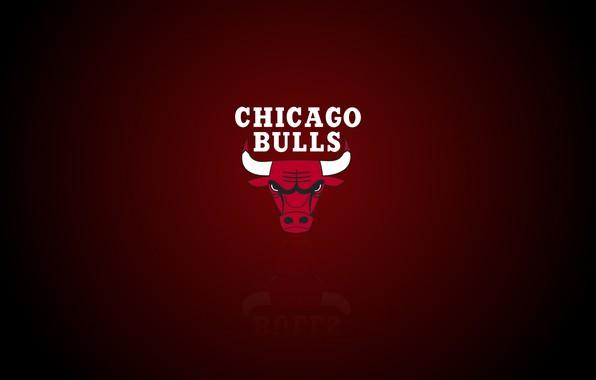 Picture Chicago, Logo, NBA, Chicago Bulls, Basketball, Sport, Emblem