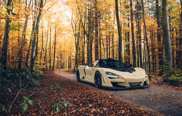 Picture autumn, forest, McLaren, supercar, 2018, Novitec, N-Largo, 720S