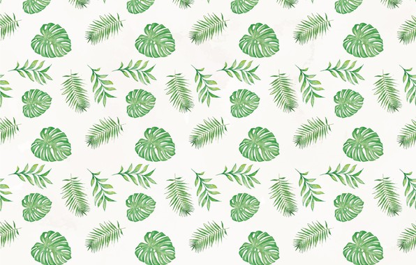 Picture green, texture, background, pattern, leaves