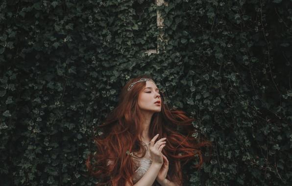 Picture girl, hands, red, Diadema, Princess, redhead, long hair, ivy, Bird Man, Alexander Gir, Aleksandra Girskaya, …