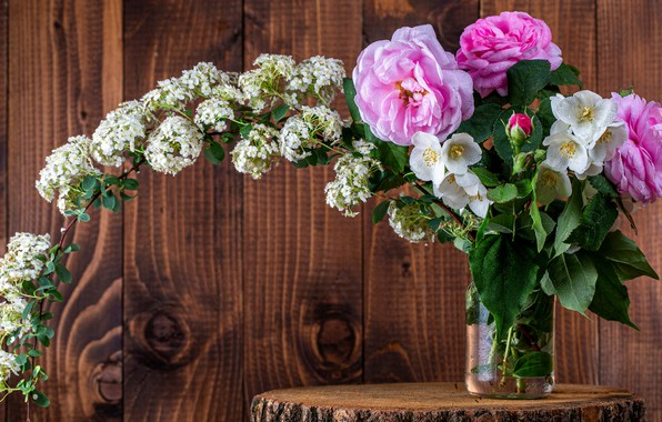 Picture leaves, drops, flowers, branches, background, Board, stump, roses, bouquet, Bank, wooden, pink, white, flowering, blooming, …