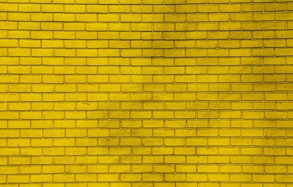 Picture yellow, wall, paint, wall, bricks, yellow, bricks, paint
