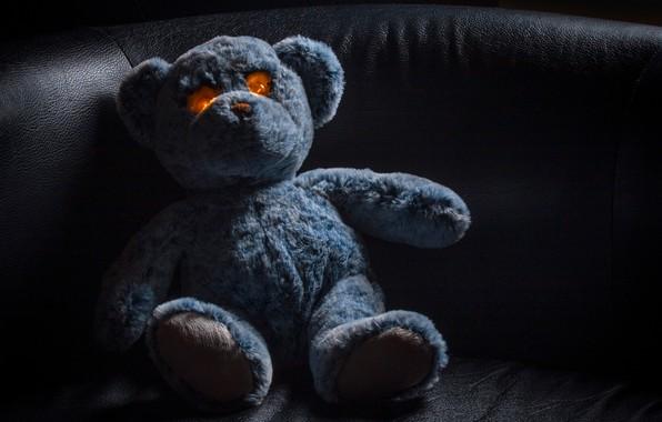 Picture toy, bear, bear, Teddy bear, glowing eyes