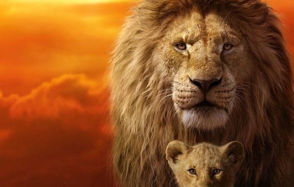 Picture frame, lion, The Lion King