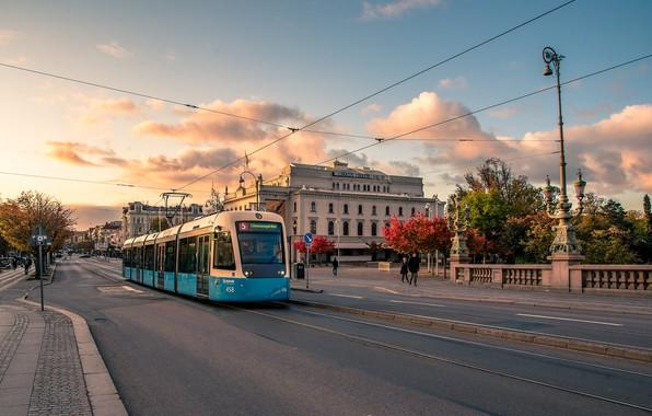 Picture autumn, street, October, tram, Sweden, Gothenburg