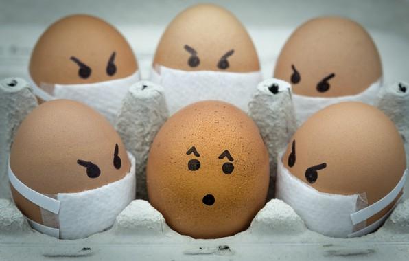 Picture eggs, eggs, pandemic, pandemic, Ali Khataw