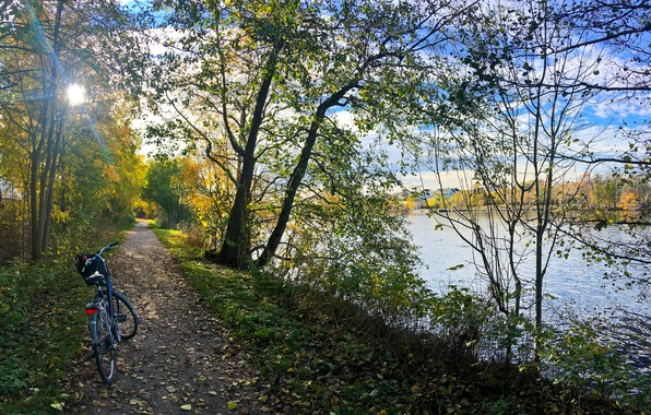 Picture autumn, forest, grass, leaves, the sun, trees, bike, Park, river, shore, path