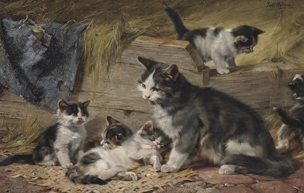Picture German painter, German painter, oil on canvas, Mother Cat with Five Kittens, Julius Anton Adam, …