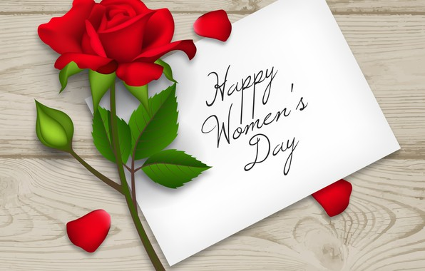 Picture red, rose, red rose, happy, flower, March 8, women's day, 8 march, women's day